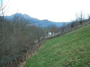 Iñaki's backyard
